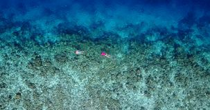 V06479 Aerial flying drone view of Maldives white sandy beach young people snorkeling swimming underwater on sunny Stock Photography