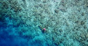 V06438 Aerial flying drone view of Maldives white sandy beach young people snorkeling swimming underwater on sunny Royalty Free Stock Images
