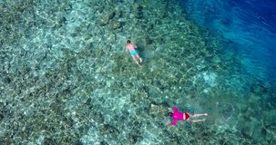 V06477 Aerial flying drone view of Maldives white sandy beach young people snorkeling swimming underwater on sunny Stock Photography