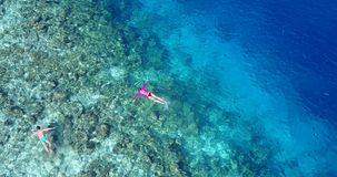 V06467 Aerial flying drone view of Maldives white sandy beach young people snorkeling swimming underwater on sunny Royalty Free Stock Images