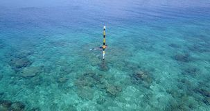 V06440 Aerial flying drone view of Maldives white sandy beach young people snorkeling swimming underwater on sunny Royalty Free Stock Photos