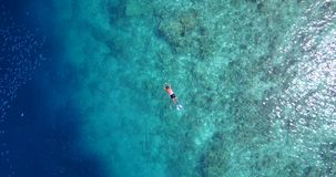 V06462 Aerial flying drone view of Maldives white sandy beach young people snorkeling swimming underwater on sunny. Aerial flying drone view of Maldives white