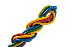 220v cable europejskiego organu typu elektrycznego Obrazy Stock