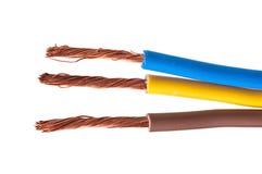 220v cable europejskiego organu typu elektrycznego Fotografia Stock