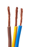 220v cable europejskiego organu typu elektrycznego Zdjęcie Stock