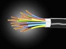 220v cable europejskiego organu typu elektrycznego Zdjęcia Royalty Free