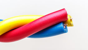 220v cable europejskiego organu typu elektrycznego Obraz Royalty Free
