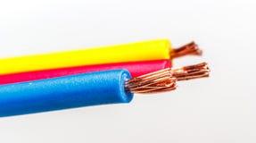 220v cable europejskiego organu typu elektrycznego Obrazy Royalty Free
