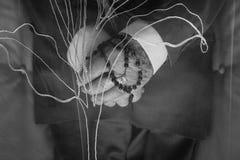 V  czarny i biały zakończenie w górę z góry stare nieżywe mężczyzna ręki wśrodku trumny podczas chrześcijańskiego żałobnego mien obrazy stock