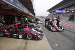 V de V Endurance Series championship Royalty Free Stock Photos