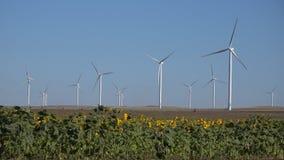 V?derkvarnar vindturbiner, ?kerbruk makt f?r generator f?r vetef?lt, elektricitet arkivbilder