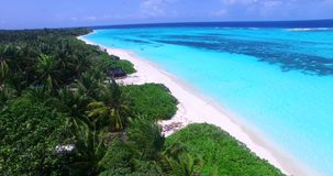 V00790 Maldives beautiful beach background white sandy tropical paradise island with blue sky sea water ocean aerial stock footage