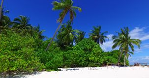 V02754 Maldives beautiful beach background white sandy tropical paradise island with blue sky sea water ocean 4k stock video