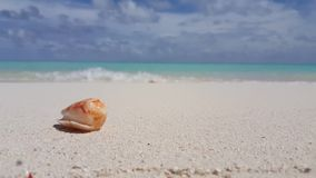 V00975 Maldives beautiful beach background white sandy tropical paradise island with blue sky sea water ocean 4k hermit Royalty Free Stock Image