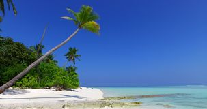V01462 Maldives beautiful beach background white sandy tropical paradise island with blue sky sea water ocean 4k palm Royalty Free Stock Image