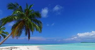 V07976 Maldives beautiful white sandy beach background with palm trees on sunny tropical paradise island with aqua blue. Maldives beautiful white sandy beach Royalty Free Stock Photo