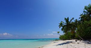 V07981 Maldives beautiful white sandy beach background with palm trees on sunny tropical paradise island with aqua blue stock video