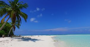 V07989 Maldives beautiful white sandy beach background with palm trees on sunny tropical paradise island with aqua blue