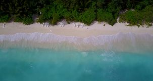 V08646 maldives tropical island and blue sea with drone aerial flying view on a beach with white sand and beautiful sky stock video footage