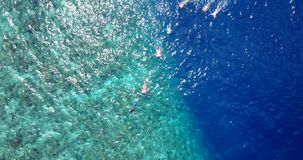 V11783 many people young boys girls snorkeling over coral reef with drone aerial flying view in crystal clear aqua blue. Many people young boys girls snorkeling stock video footage
