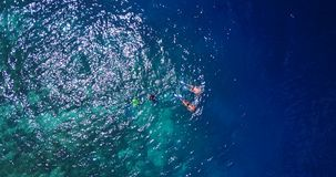 V11866 many people young boys girls snorkeling over coral reef with drone aerial flying view in crystal clear aqua blue. Many people young boys girls snorkeling stock video