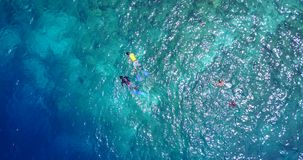 V11858 many people young boys girls snorkeling over coral reef with drone aerial flying view in crystal clear aqua blue. Many people young boys girls snorkeling stock footage