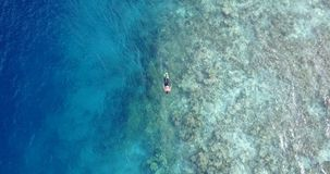 V11795 many people young boys girls snorkeling over coral reef with drone aerial flying view in crystal clear aqua blue. Many people young boys girls snorkeling stock video
