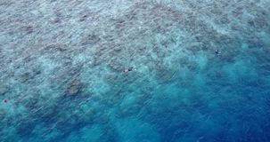 V11892 many people young boys girls snorkeling over coral reef with drone aerial flying view in crystal clear aqua blue. Many people young boys girls snorkeling stock video footage