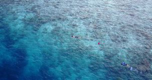 V11790 many people young boys girls snorkeling over coral reef with drone aerial flying view in crystal clear aqua blue. Many people young boys girls snorkeling stock video footage