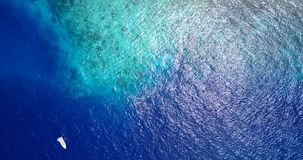V11836 many people young boys girls snorkeling over coral reef with drone aerial flying view in crystal clear aqua blue. Many people young boys girls snorkeling stock footage