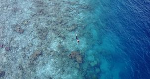 V11803 many people young boys girls snorkeling over coral reef with drone aerial flying view in crystal clear aqua blue. Many people young boys girls snorkeling stock footage