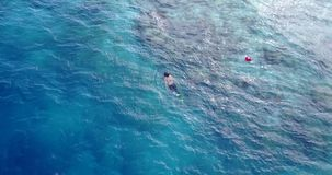 V11904 many people young boys girls snorkeling over coral reef with drone aerial flying view in crystal clear aqua blue. Many people young boys girls snorkeling stock video