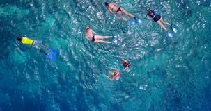 V11848 many people young boys girls snorkeling over coral reef with drone aerial flying view in crystal clear aqua blue. Many people young boys girls snorkeling royalty free stock photos