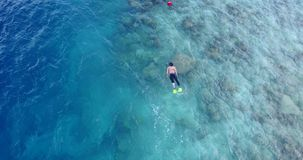 V11888 many people young boys girls snorkeling over coral reef with drone aerial flying view in crystal clear aqua blue. Many people young boys girls snorkeling royalty free stock photography