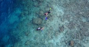 V11894 many people young boys girls snorkeling over coral reef with drone aerial flying view in crystal clear aqua blue. Many people young boys girls snorkeling royalty free stock photos