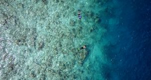 V11801 many people young boys girls snorkeling over coral reef with drone aerial flying view in crystal clear aqua blue. Many people young boys girls snorkeling royalty free stock photo