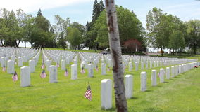 V.A. National Cemetery-Eagle Point Oregon. V.A. National Cemetery - Eagle Point, Oregon. Dolly shot-slow right-left with grave markers and American Flags stock video