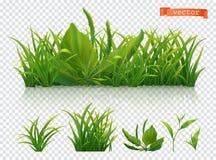 V?r Grönt gräs, realistisk symbolsuppsättning för vektor 3d royaltyfri illustrationer