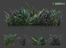 V?r Mörkt - grönt gräs, symbolsuppsättning för vektor 3d vektor illustrationer