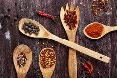 V?rias especiarias em colheres de madeira no fundo do marrom escuro Tipos diferentes de paprika e de gr?o de pimenta fotografia de stock