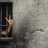 V sign (victory sign) a man behind bars. Background. Stock Image