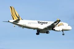 9V-TAC Airbus A320-200 de Tigerair Imagen de archivo