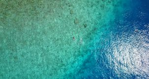 V09301 two 2 people young couple snorkeling over coral reef with drone aerial flying view in crystal clear aqua blue. Two 2 people young couple snorkeling over stock footage