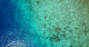 V09305 two 2 people young couple snorkeling over coral reef with drone aerial flying view in crystal clear aqua blue. Two 2 people young couple snorkeling over stock video footage