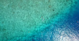 V09300 two 2 people young couple snorkeling over coral reef with drone aerial flying view in crystal clear aqua blue. Two 2 people young couple snorkeling over stock video