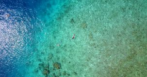 V09304 two 2 people young couple snorkeling over coral reef with drone aerial flying view in crystal clear aqua blue. Two 2 people young couple snorkeling over stock video