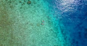 V09302 two 2 people young couple snorkeling over coral reef with drone aerial flying view in crystal clear aqua blue. Two 2 people young couple snorkeling over stock video