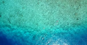 V09294 two 2 people young couple snorkeling over coral reef with drone aerial flying view in crystal clear aqua blue. Two 2 people young couple snorkeling over stock video footage
