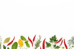 V?xt- sidor f?r krydda och chilipeppar p? vit bakgrund Gr?nsakmodell Blom- och gr?nsaker p? vit bakgrund Top besk?dar arkivfoto