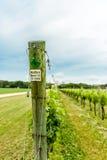 VA东部岸的酿酒厂  库存图片